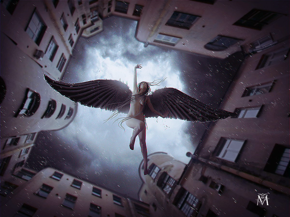 angels falling from the sky Watch the sky death is near you are falling the final day is here [short instrumental break] satan's death armies approaching to capture lost souls of the dead implying his will as he pleases the final damnation ahead.